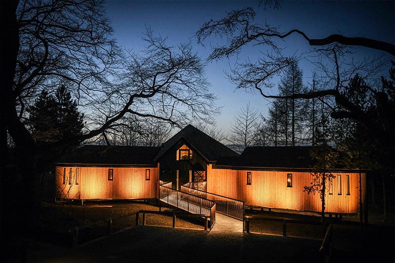 Luxury treehouses
